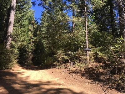 Nevada City Residential Lots & Land For Sale: 17845 Mobley Springs Road