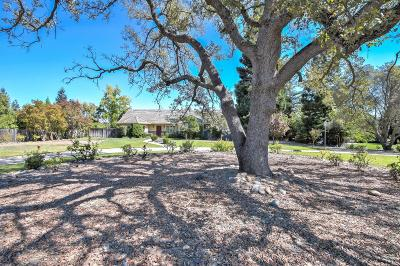 Granite Bay Single Family Home For Sale: 8185 Macargo Court