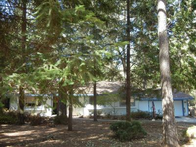 Grass Valley Single Family Home For Sale: 16004 Langley Place