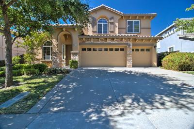 El Dorado Hills Single Family Home For Sale: 5365 Garlenda Drive