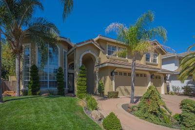 Granite Bay Single Family Home For Sale: 9686 Swan Lake Drive
