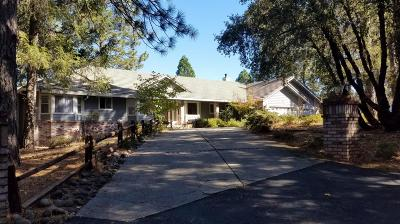 Colfax Single Family Home For Sale: 431 Manzanita Way