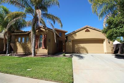 Elk Grove Single Family Home For Sale: 9840 Peters Ranch Way