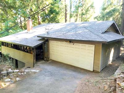 Pollock Pines Single Family Home For Sale: 6955 Ridgeway Drive