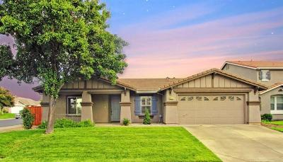 Rocklin Single Family Home For Sale: 6001 Barn Swallow Court
