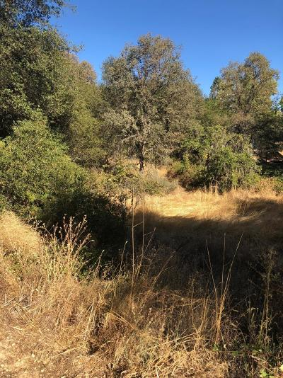 Placerville Residential Lots & Land For Sale: 1074 Bridgeview Drive