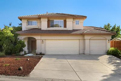 El Dorado Hills Single Family Home For Sale: 3611 Sebastian Court