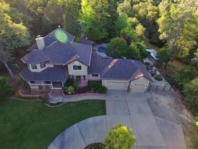 Placer County Single Family Home For Sale: 2300 Shirland Park Place