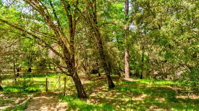 Residential Lots & Land For Sale: 8080 Boondock Trail