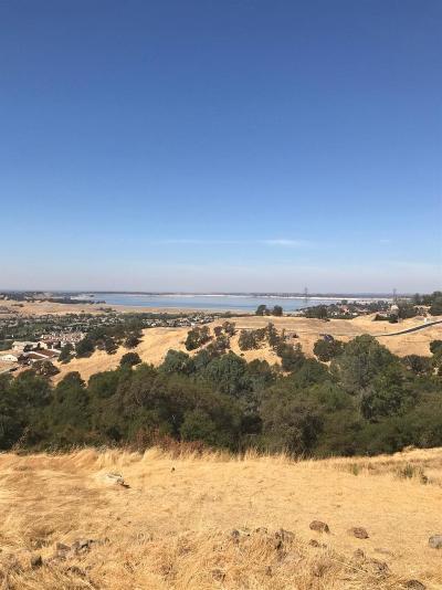 El Dorado Hills Residential Lots & Land For Sale: 2815 Capetanios Drive