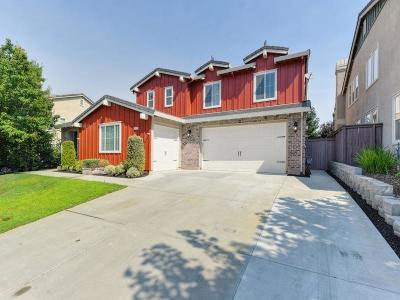 Rocklin Single Family Home For Sale: 2179 Red Setter Road