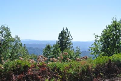 Foresthill Residential Lots & Land For Sale: 6420 Hidden Treasure Lane