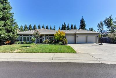El Dorado County Single Family Home For Sale: 3624 Mira Loma Drive
