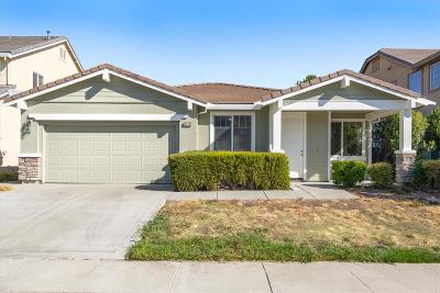 Elk Grove Single Family Home For Sale: 9579 Sea Cliff Way