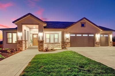 Sacramento County, Placer County, El Dorado County Single Family Home For Sale: 746 Glen-Mady Way