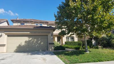 Elk Grove Single Family Home For Sale: 10165 Brian Kelly Way
