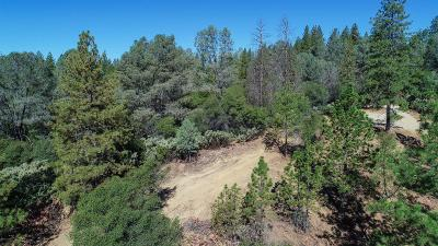 El Dorado County Single Family Home For Sale: 1285 Cosens Lane
