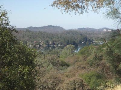 Auburn Residential Lots & Land For Sale: 23096 Moon Ridge