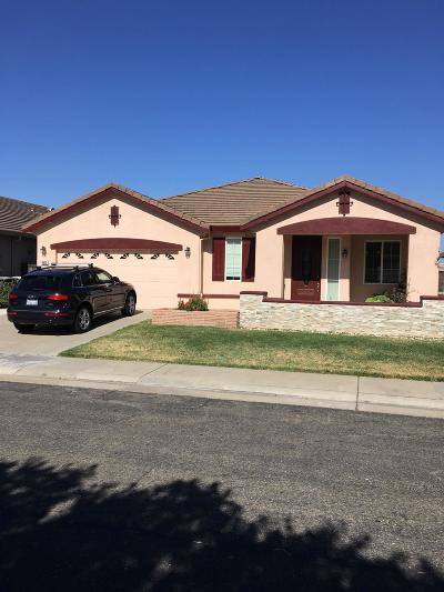 Elk Grove Single Family Home For Sale: 4513 Blossom Ranch Drive