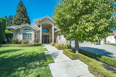 Manteca Single Family Home For Sale: 1073 Spring Meadow Dr