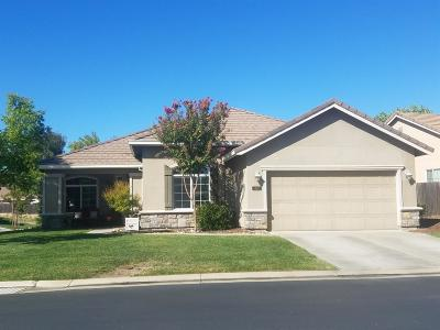 Valley Springs Single Family Home For Sale: 107 Bullion Hill Drive