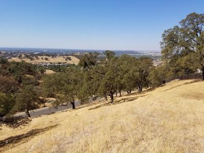El Dorado Hills Residential Lots & Land For Sale: 482 Montridge Way