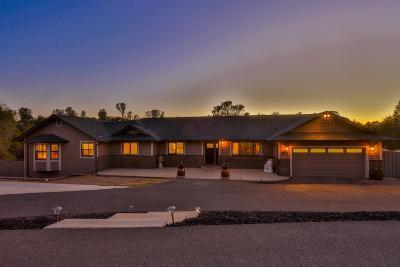 Cameron Park, Shingle Springs Single Family Home For Sale: 5860 Saddlehorn Road