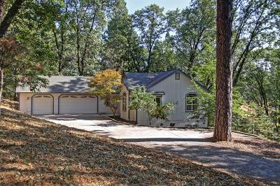 Meadow Vista Single Family Home For Sale: 1965 Meadow Oak Lane