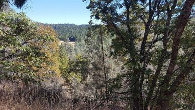 Pollock Pines Residential Lots & Land For Sale: 5371 Five Spot Road