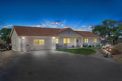 Valley Springs Single Family Home For Sale: 9070 Redman Road