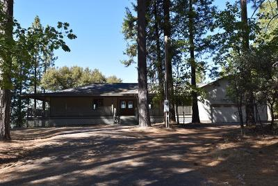 Single Family Home For Sale: 24201 Shake Ridge Road