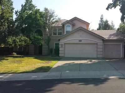 Rocklin Single Family Home For Sale: 6503 Swallowsview Court