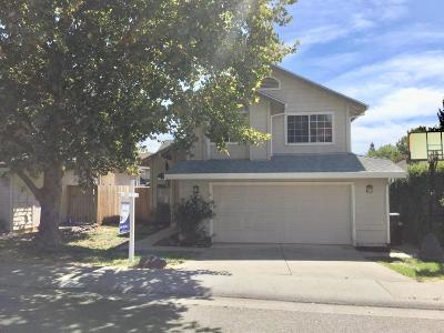 Antelope Single Family Home For Sale: 4028 Grey Livery Way