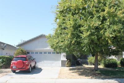 Sacramento Single Family Home For Sale: 7908 Fincastle Court
