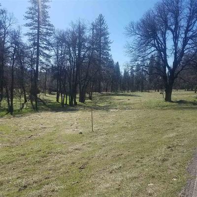 Pioneer Residential Lots & Land For Sale: Tiger Creek Creek