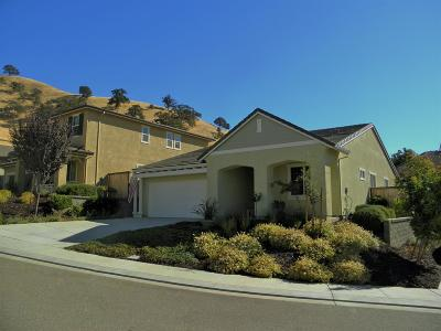 Patterson Single Family Home For Sale: 20728 Fairway Drive