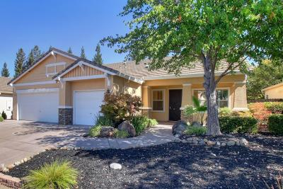 Roseville Single Family Home For Sale: 7032 Ludlow Drive