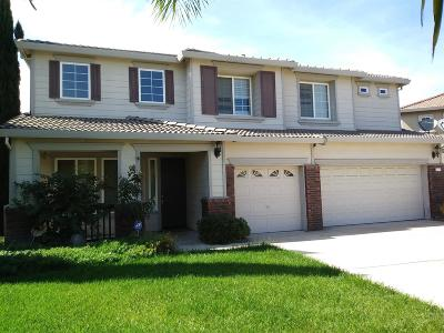 Stockton Single Family Home For Sale: 9711 Diego Court