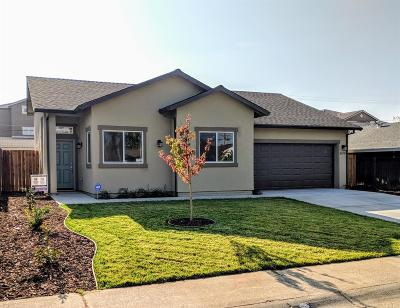 North Highlands Single Family Home For Sale: 3670 Plymouth Drive
