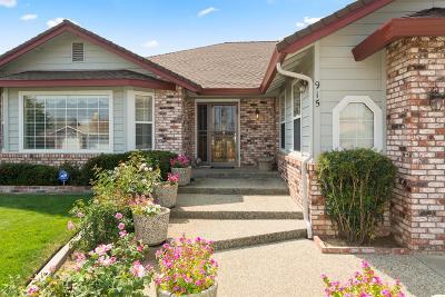 Single Family Home For Sale: 915 El Oro Drive