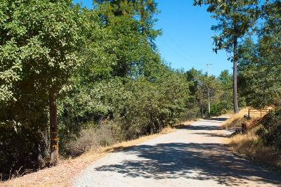 Placerville Residential Lots & Land For Sale: Rex Court
