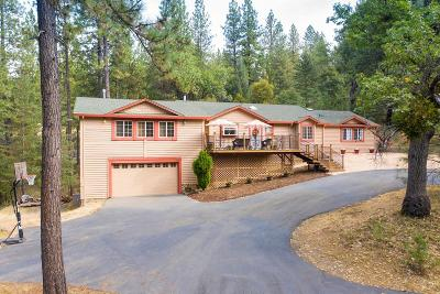 Placerville Single Family Home For Sale: 6140 Homestead Drive