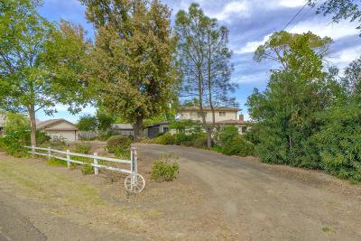 Yolo County Single Family Home For Sale: 28968 County Road 26