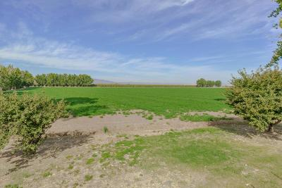 Yolo County Commercial Lots & Land For Sale: County Road 26