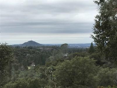 Jackson Residential Lots & Land For Sale: 20500 Canyon View Drive