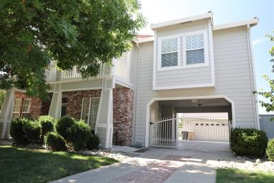 Elk Grove Single Family Home For Sale: 4401 Babson Drive