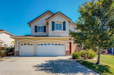 Sacramento Single Family Home For Sale: 17 Belladonna Court