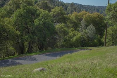 Grass Valley Residential Lots & Land For Sale: 19822 Applejack Drive