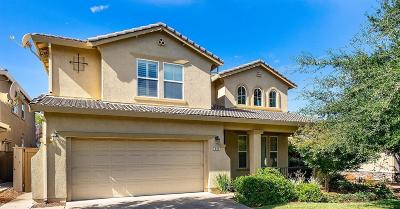 El Dorado Hills Single Family Home For Sale: 608 Mazza Court