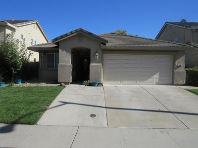 Roseville Single Family Home For Sale: 1796 Tatiana Street